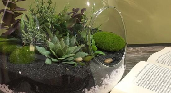 diy un terrarium avec des plantes artificielles maison. Black Bedroom Furniture Sets. Home Design Ideas