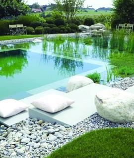 piscine-naturelle